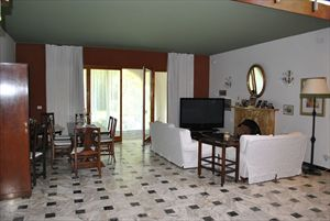 Villa Pineta : Living room