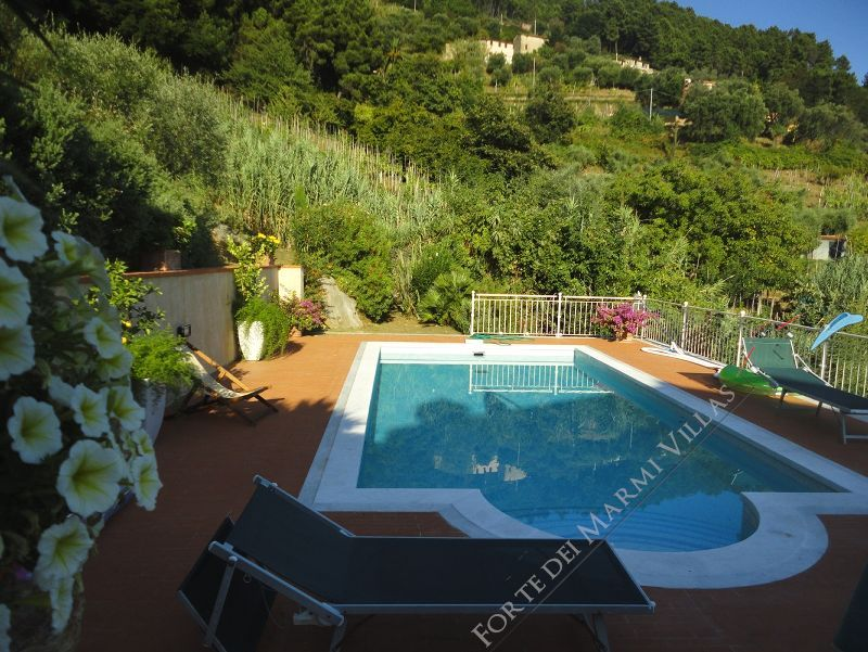 Villa Arianna : Swimming pool