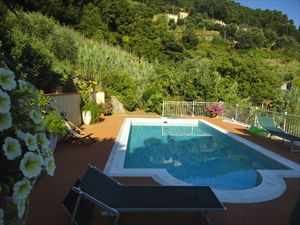 Villa Arianna : Piscina