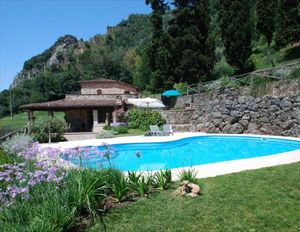 Villa Rosmarino : detached villa to rent Camaiore Camaiore