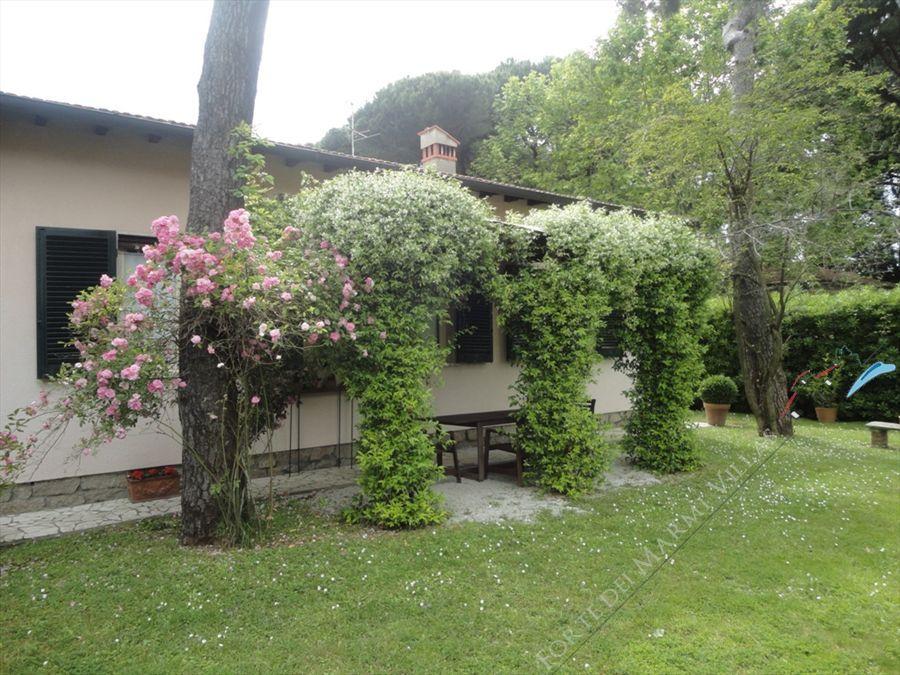 Villa Brezza  - Villa singola Forte dei Marmi