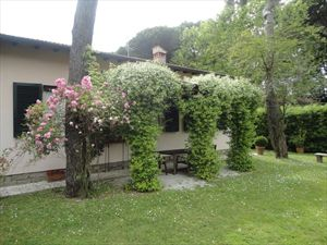 Villa Brezza  - Detached villa Forte dei Marmi