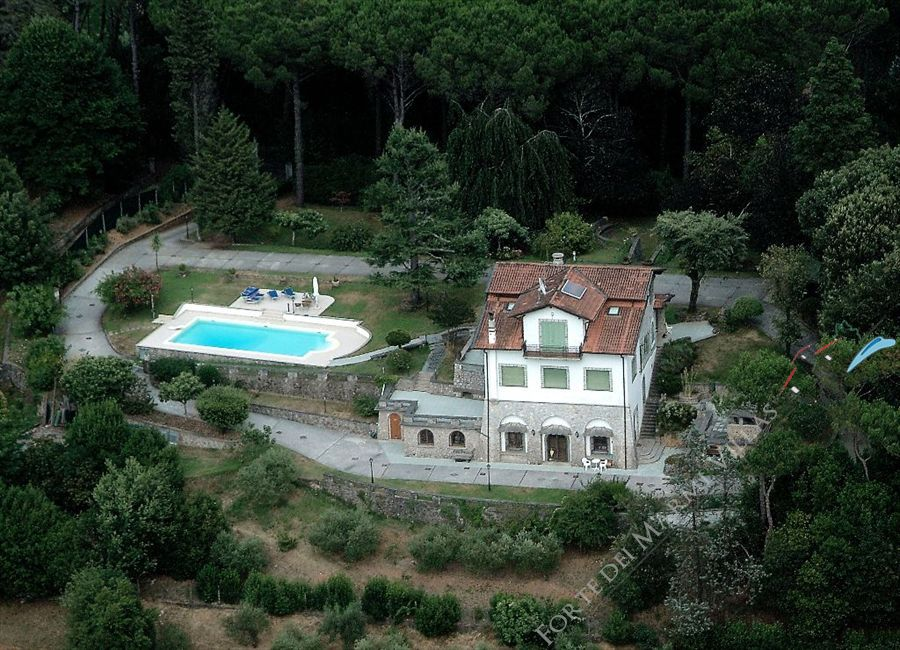 Villa Domus Camaiore detached villa to rent and for sale Camaiore