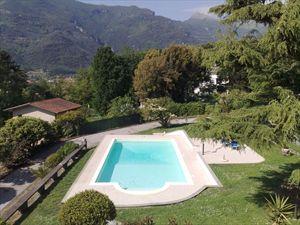 Villa Domus Camaiore : Swimming pool