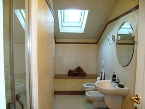 Villa Cavallini : Bathroom with shower