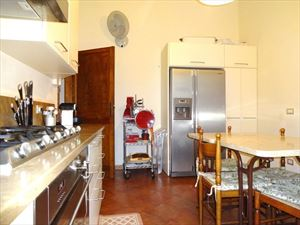 Villa Dalia : Kitchen