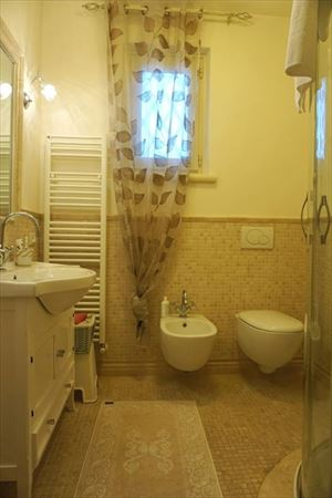 Villa Graziosa  : Bathroom with shower