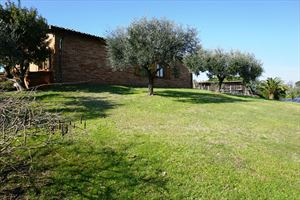 Villa Marilena : Outside view