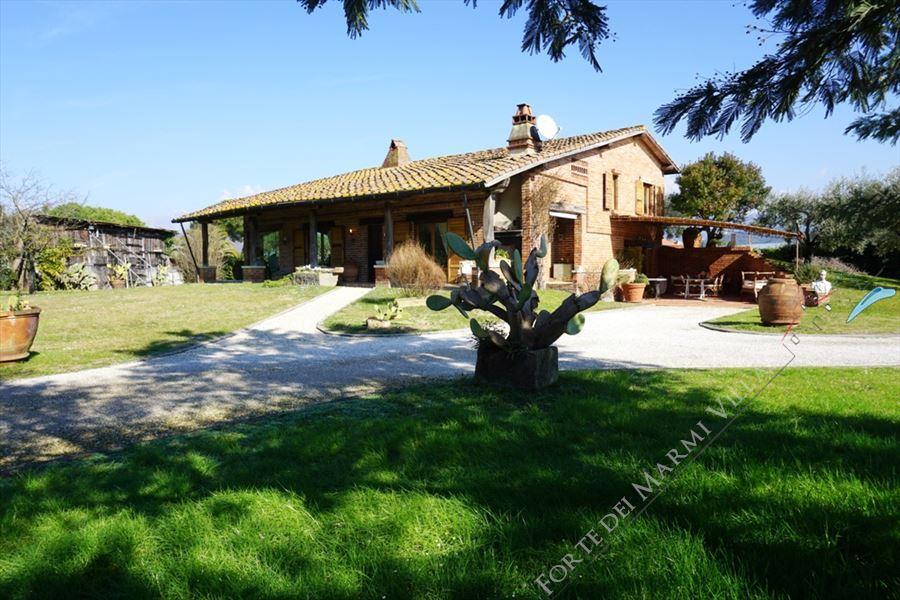 Villa Marilena - Detached villa Lido di Camaiore