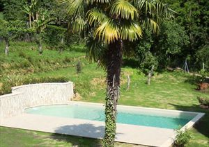 Villa Mirella  : Сад