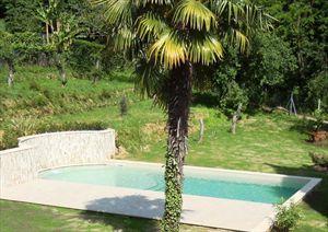 Villa Mirella  : Garden