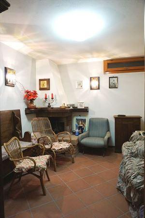 Villa Maggiorana : Cantina