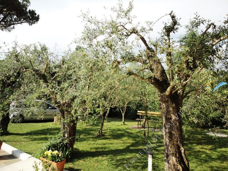 Villa del Duca : Сад