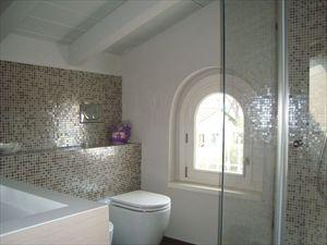 Bifamiliare Nettuno : Bathroom with shower