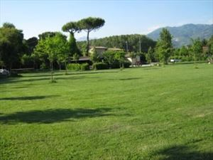 Villa Countryside Pietrasanta : Outside view