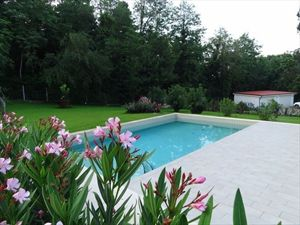 Villa Mirella  : Swimming pool