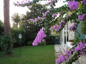 Villa  Mazzini  : Vista esterna