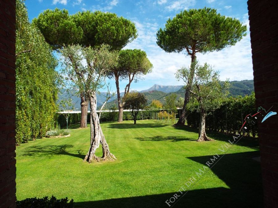 Villa Sally  detached villa to rent Camaiore