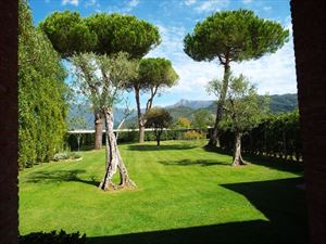 Villa      Sally   : Detached villa Camaiore
