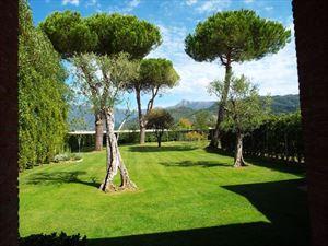 Villa Sally   : Villa singola Camaiore