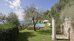 Villa Degli Aranci Lucca : Swimming pool