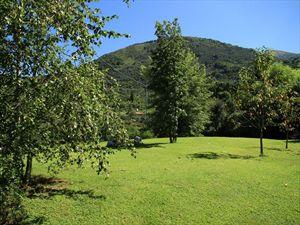 Villa Marcello : Garden