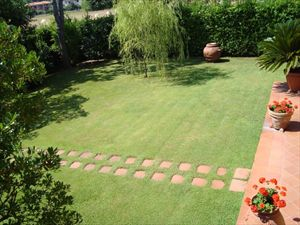 Villa Solare : Сад