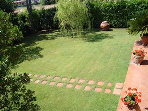 Villa Solare : Giardino