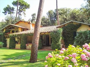 Villa Roma - Detached villa Forte dei Marmi