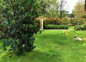 Villa Principe : Giardino