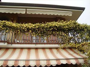 Villa dei Limoni : Outside view