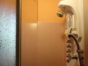 Villa Veronica : Bathroom with shower