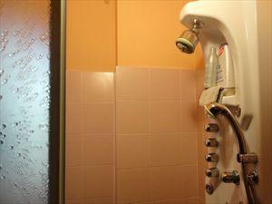 Villa Veronica : Ванная комната с душем