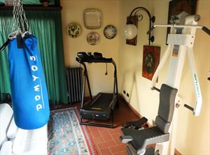 Villa Veronica : Gym