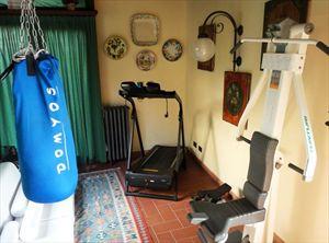 Villa Veronica : Фитнес зона