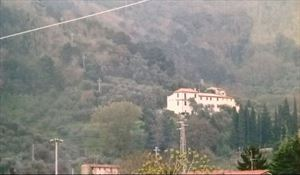 Villa Massarosa : Outside view